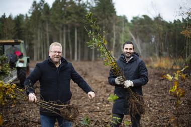 Tausend Bäume für eine saubere Umwelt